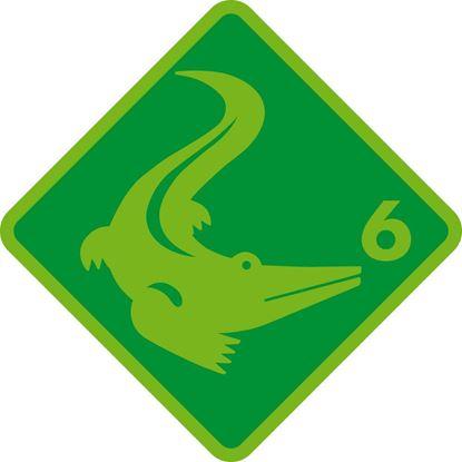 Bild von Int F / Krokodil